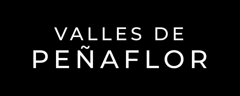 Logo Valles de Peñaflor